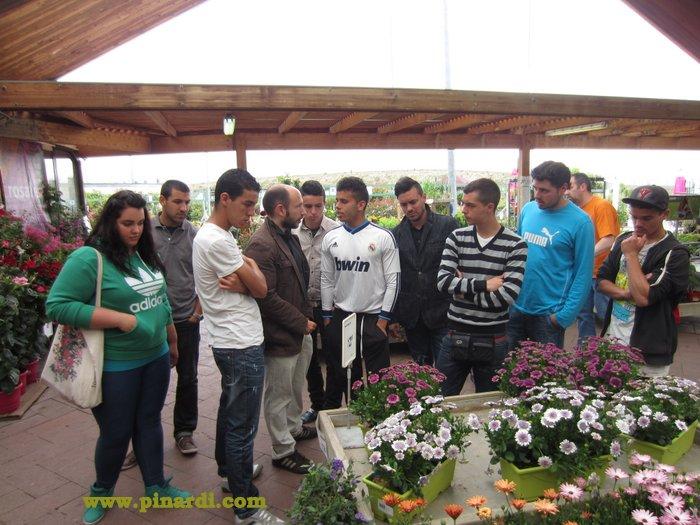 Comienzan las pr cticas del curso de jardiner a for Curso de jardineria